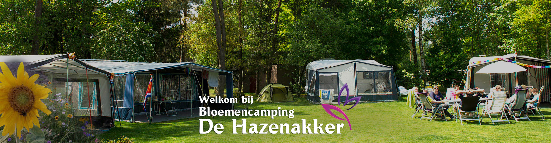 Bloemencamping De Hazenakker